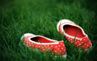 grass,shoes grass shoes 2560x1600 wallpaper – grass,shoes grass shoes 2560x1600 wallpaper – Shoes Wallpaper – Desktop Wallpaper
