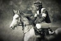 Jockey and Horse Photo Portrait Before Start Racing - Animals Photography - 54ka StockPhoto