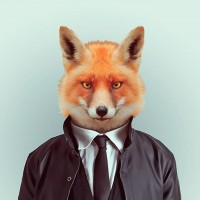 Fashion Zoo Animals – Fubiz™
