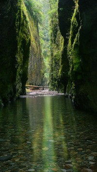 oneonta gorge oregon, Nature | iPhone wallpapers HD
