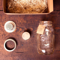 Mason Jar Cocktail Shaker | Fancy Crave
