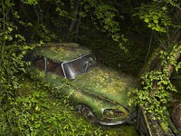 Peter Lippmann :: photographer :: PARADISE PARKING 8