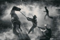 Smithsonian Magazine 2012 Photography Contest: 50 Finalists - The Big Picture - Boston.com