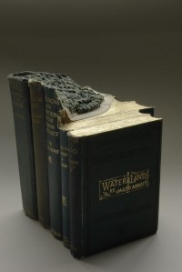 Mind Blowing Book Sculptures by Guy Laramee   inspirationfeed.com