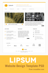 Minimal Website Design PSD Template for Free Download - Freebie No: 48