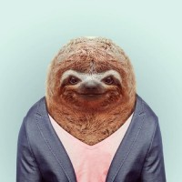 Groovy Zoo Portraits by Yago Partal | inspirationfeed.com