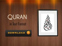 Quran - Download in text format