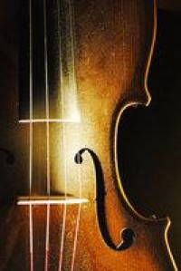 fiddle by ~lucaspanu