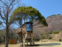 Tree House Design A Fairy Tale | Home with Design