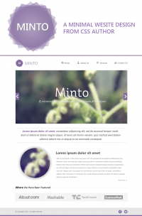 Minto - A Free Minimal Website Design Template PSD - Freebie No: 66
