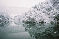 20 Free and Frosty Winter Wallpapers | inspirationfeed.com