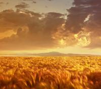 Landscape Photography by Julia Starr / Landscape Photography / Photography Hubs and Blogs
