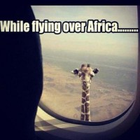 while flying over africa | We Heart It