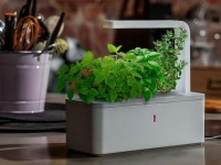 Smart Herb Garden by Click & Grow by Click & Grow — Kickstarter