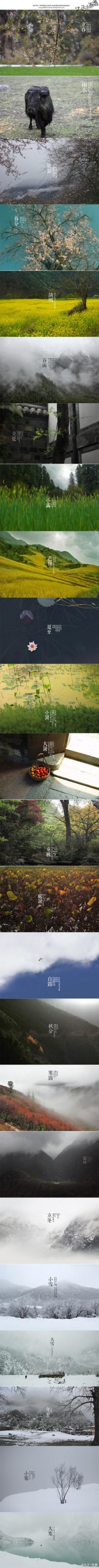 taozhedong的采集 - 季节的转动,有了这些照片,我才...
