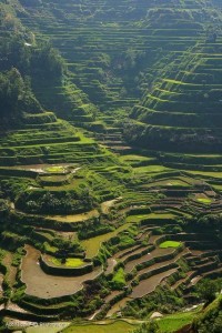 Banaue Rice Terraces in Philippines | Stunning Places #Places