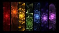 rainbow_flowers_by_mythara-d34tm1u.jpg (1600×900)