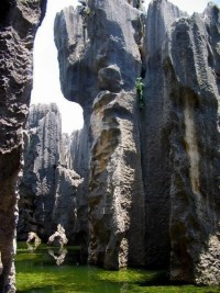 Kunming Stone Forest -Yunnan, China | PicsVisit