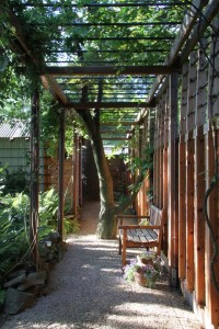 Suburban Oasis - modern - landscape - philadelphia - Princeton Design Collaborative