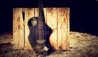 The-Alpaca-Guitar.jpg (1024×600)