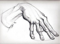 The Anatomy of a Hand by ~Tarana