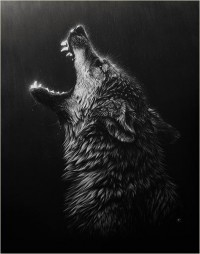WildVisions - The Wildlife Art of Cristina Penescu
