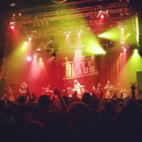 Dirty Heads's Photos