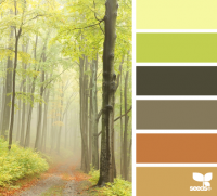 Design Seeds® | for all who ? color | forest hues
