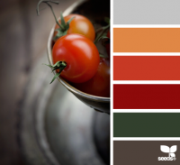 Design Seeds® | for all who ? color | tomato tones