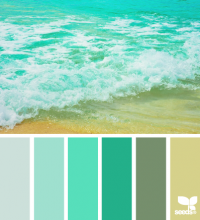 Design Seeds® | for all who ? color | color surf