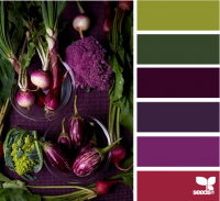 Design Seeds® | for all who ? color | produced purple