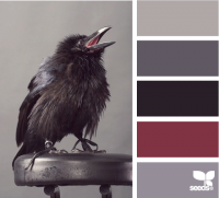 Design Seeds® | for all who ? color | raven tones