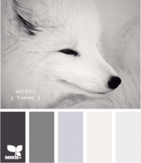 Design Seeds® | for all who ? color | arctic tones