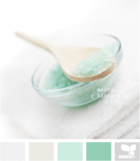 Design Seeds® | for all who ? color | minty tints