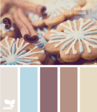 Design Seeds® | for all who ? color | baked tones