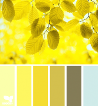 Design Seeds® | for all who ? color | yellow leaves