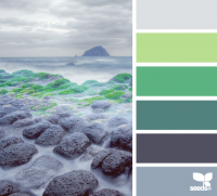 Design Seeds® | for all who ? color | a shore hues