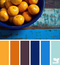 Design Seeds® | for all who ? color | citrus blues