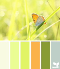 Design Seeds® | for all who ? color | winged palette