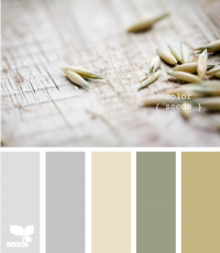 Design Seeds® | for all who ? color | color seeds