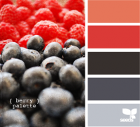 Design Seeds® | for all who ? color | berry palette