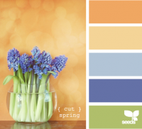 Design Seeds® | for all who ? color | cut spring
