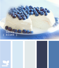 Design Seeds® | for all who ? color | berry blues