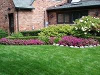 Landscaping Tips for the Small Backyard | Kerala Home Designs 2013