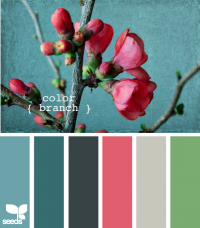 Design Seeds® | for all who ? color | color branch