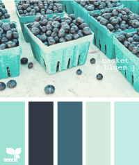 Design Seeds® | for all who ? color | basket blues