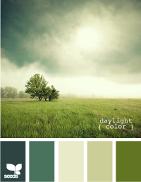 Design Seeds® | for all who ? color | daylight color