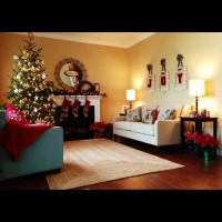 Christmas (indoor) - traditional - -