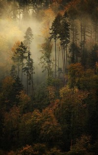 The 30 Most Beautiful Nature Photography | Daily source for inspiration and fresh ideas on Architecture, Art and Design