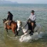 Wanderreiten auf Sizilien - die Natur Siziliens mal anders entdecken
